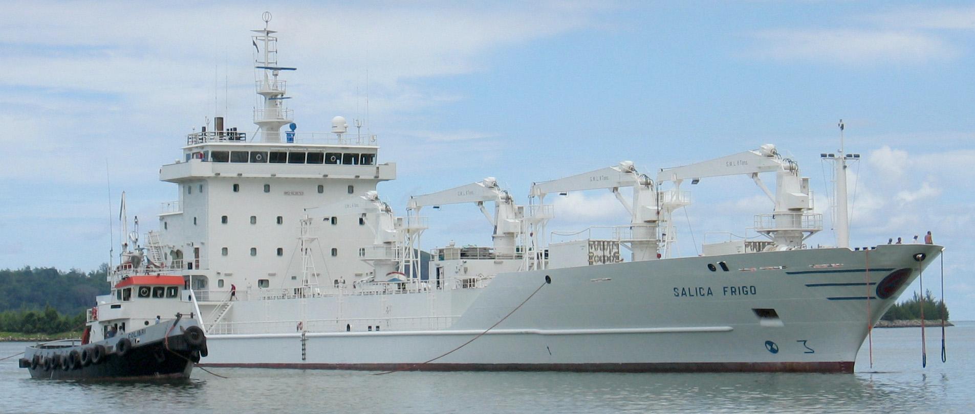 انواع کشتی های یخچال دار