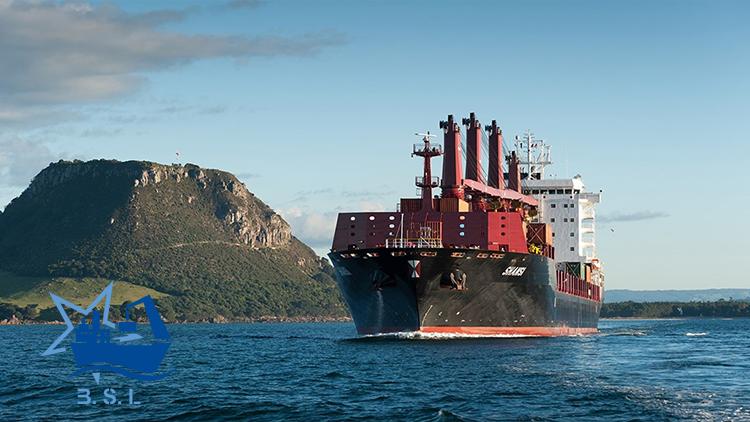کشتی های چند منظوره
